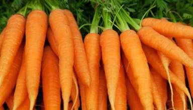 فواید سبزیجات لاغر کننده
